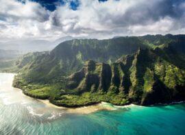 Hawaii surrogacy