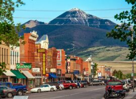 Montana surrogacy