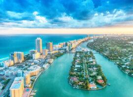 Surrogacy in FL