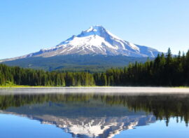 Surrogacy in OR